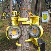 Automatic Trees Harvester